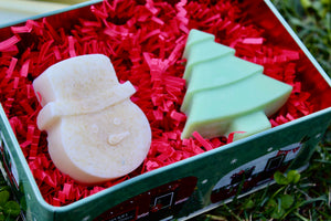 Cinnamon Frosty and Hollie Jollie Soap Combo