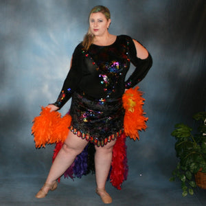 Mardi Gras/Plus Size Latin Dress