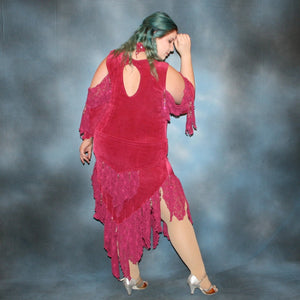 Rosy/Plus Size Latin Dress