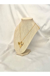 Gold Plated Shark Tooth Necklace - Hausofassembly