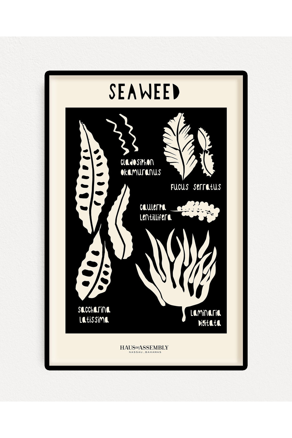 Cut Out Seaweed Art Print Poster - Hausofassembly