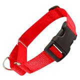 All Nylon Martingale + Plastic Quick Release Large - 6 Dollar Collars