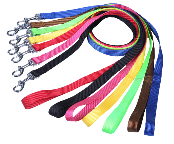 "Nylon Dog Leash 1"" Wide 4' Long"