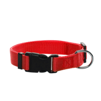 Adjustable Nylon Dog Collar Large