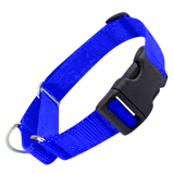 All Nylon Martingale + Plastic Quick Release Small - 6 Dollar Collars