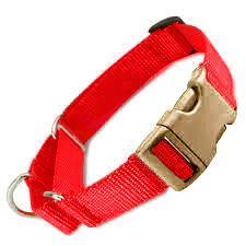 All Nylon Martingale + METAL Quick Release Large - 6 Dollar Collars