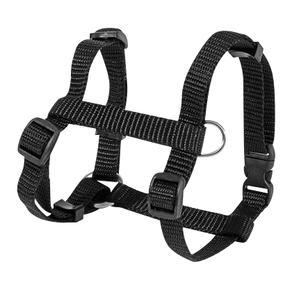 Nylon Harness Large - 6 Dollar Collars
