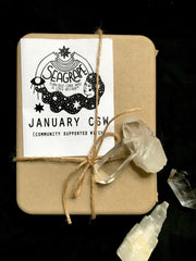 February Community Supported Witch (CSW) Kit: Dream your Dreams