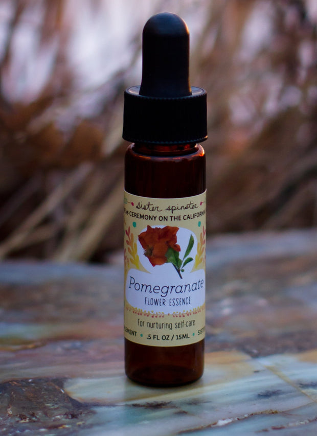 Pomegranate Essence: Nurturing Self-Care