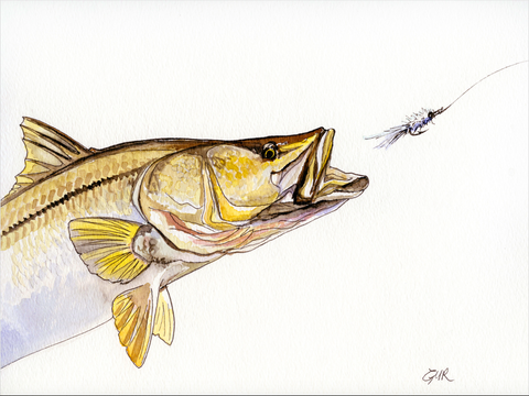 Snook and Schminnow - Print