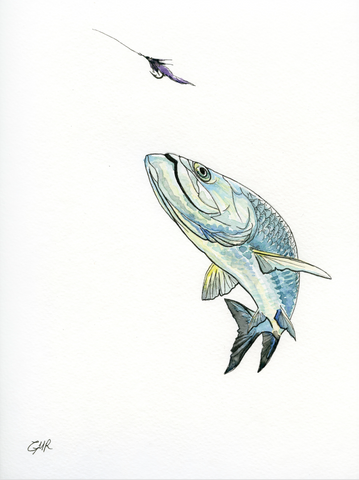 Watercolor Tarpon - Print