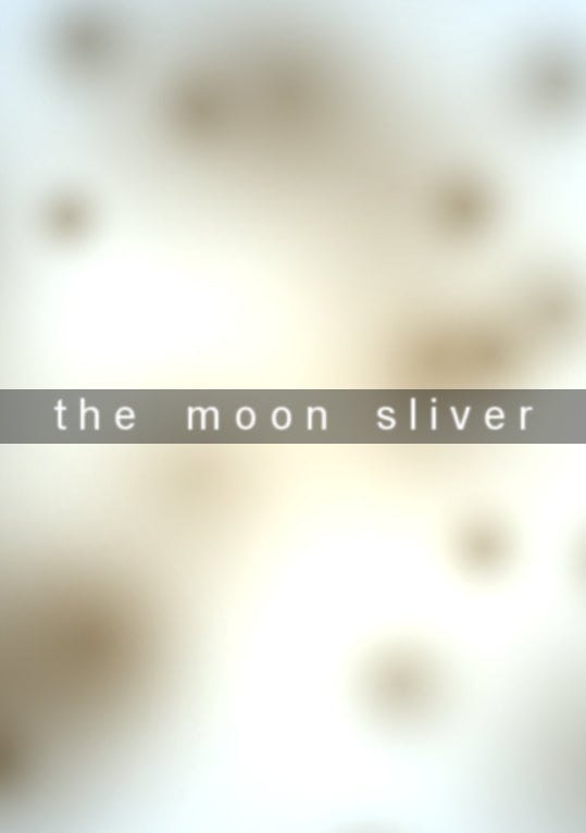 The Moon Sliver Steam CD Key