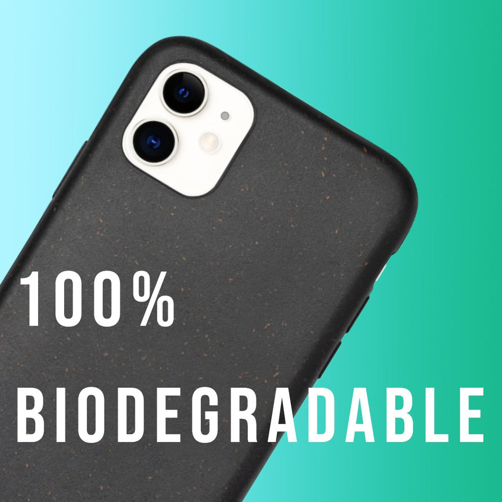 The Biodegradable Blunt Case | blunt cases