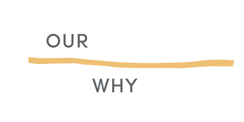 OUR WHY