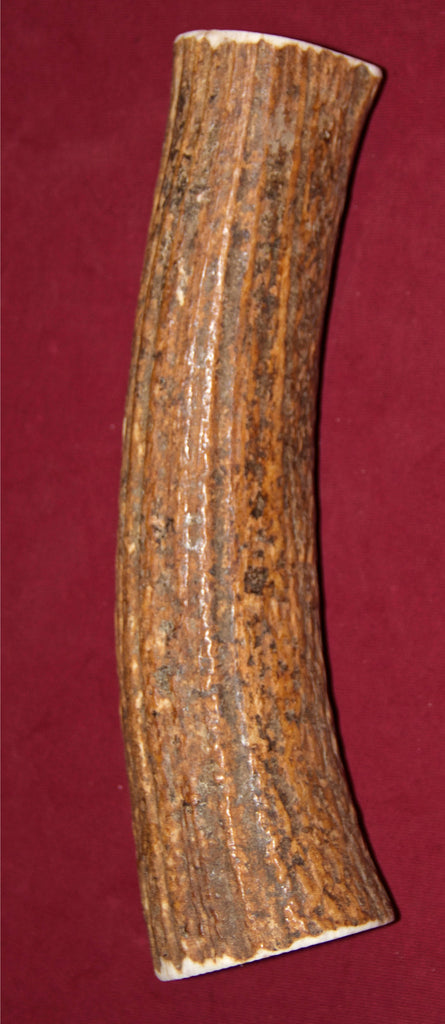 Monster Elk Antler For Dogs Over 85 Pounds or Powerful Chewers