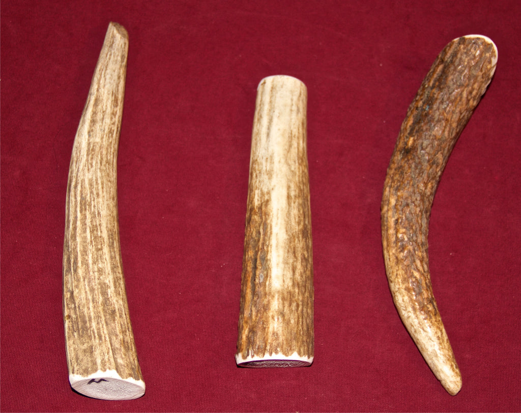 Medium Elk Antler For Dogs Up To 25 Pounds