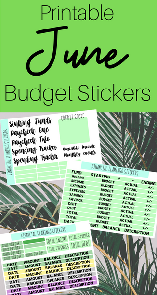 June Budget Planner Stickers {Printable}