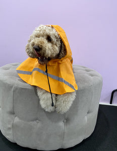Dog Raincoat Poncho
