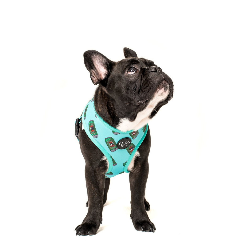 The VB: Reversible Harness