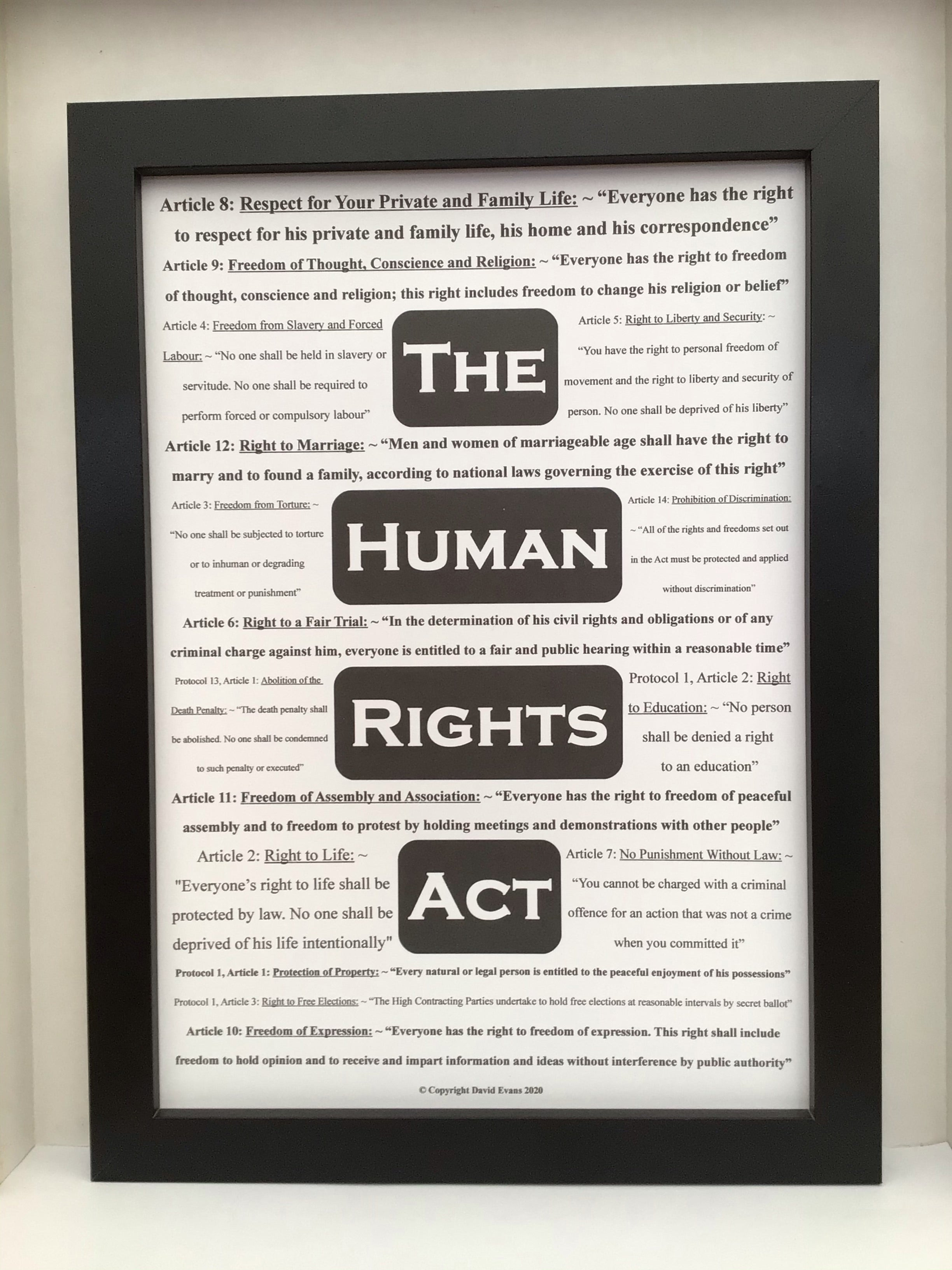 Striking Informative poster which features the 16 rights protected by law through the Human Rights Act
