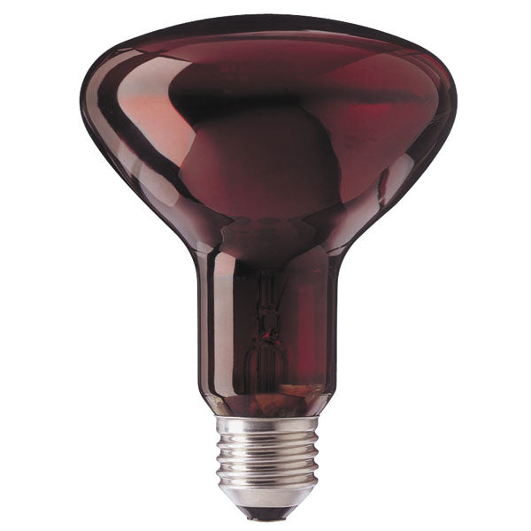 Infrared Light Bulb - Philips Infraphil - E27 - Standard Screw - 100W