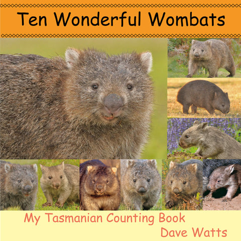 Ten Wonderful Wombats | Dave Watts Photography | PB