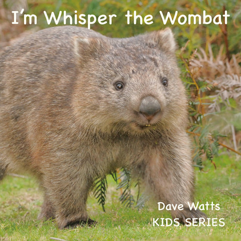I'm Whisper the Wombat | Dave Watts Photography | PB