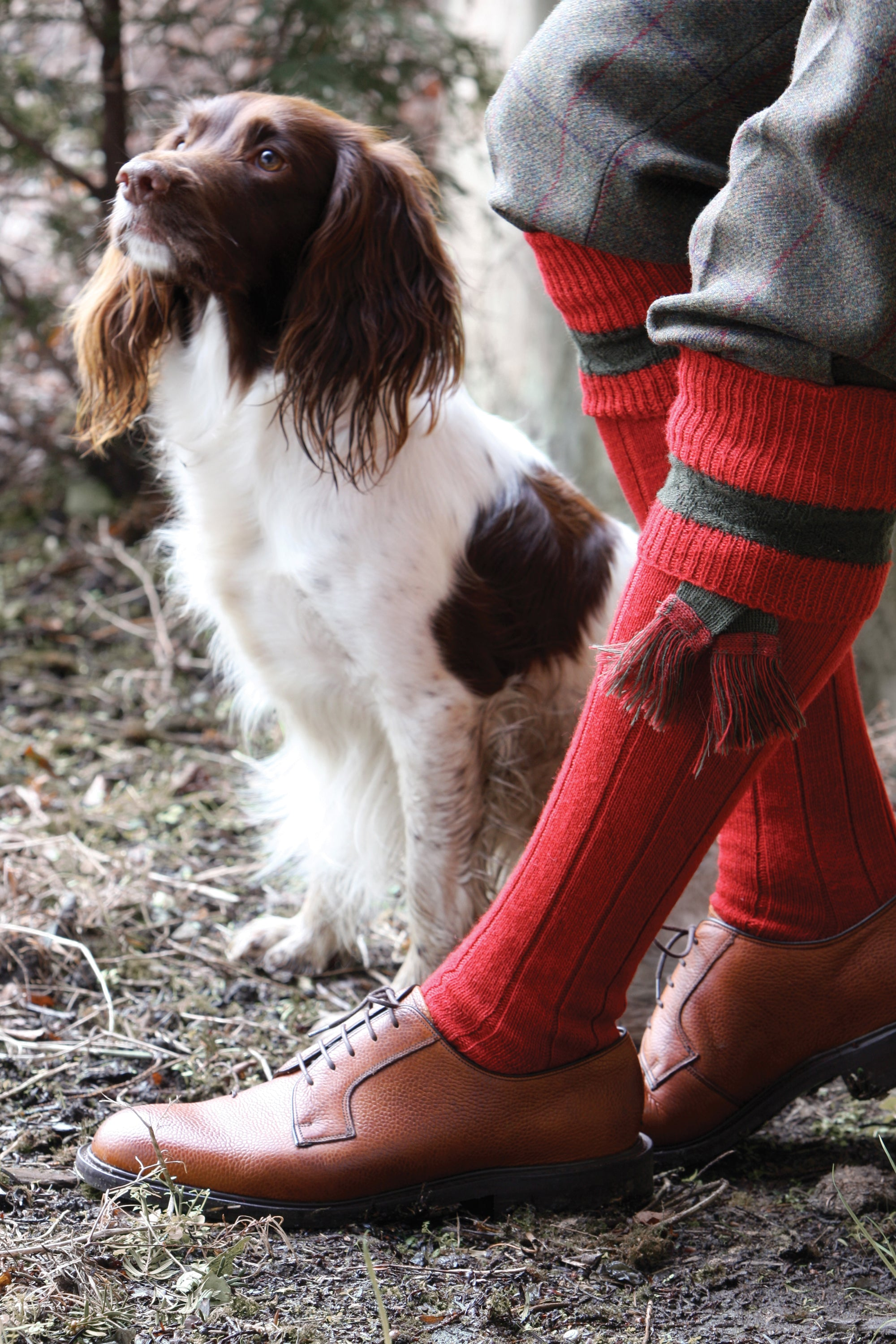Pennine Byron Shooting Sock for Men in Ruby