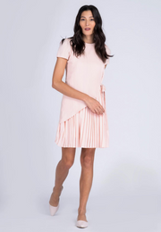 Puff Sleeve Dress with Pleated skirt