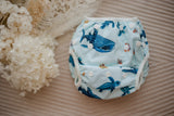 Marine Life Swimming Nappy. Reusable swimming nappy. My Little Gumnut.