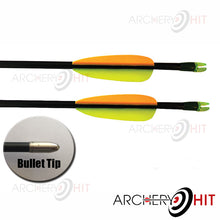 Load image into Gallery viewer, Two Fibreglass arrows in Chameleon Compound bow package from Archery Hit
