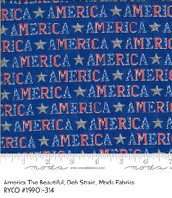 Load image into Gallery viewer, America The Beautiful By Deb Strain for Moda Fabrics
