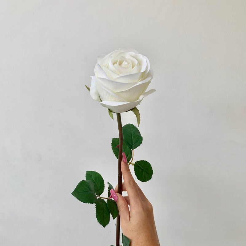 White Rose Vienna Stem
