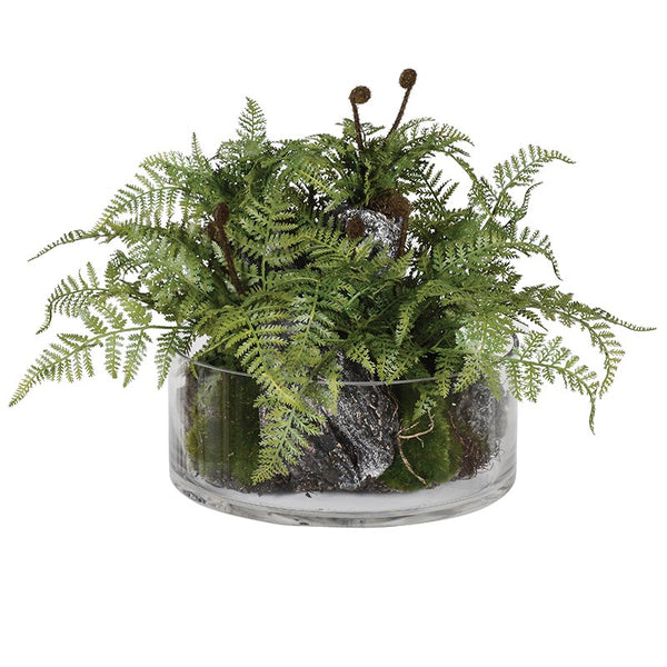 Green Fern Plant with Bark in Glass Bowl
