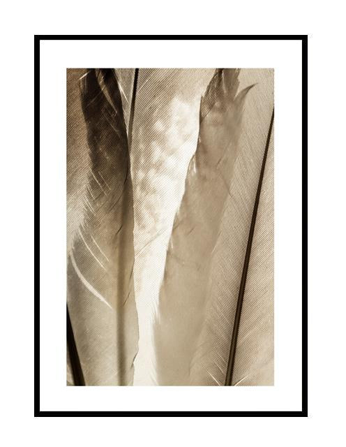 GOLDEN FEATHERS PRINT - Options Available