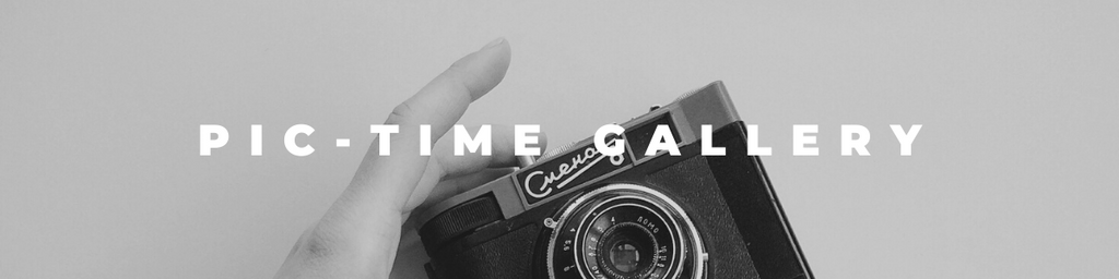how to start using Pic-Time, best photography gallery hosting site to generate passive income
