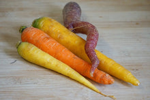 Load image into Gallery viewer, Carrots, Local & Organic (Rainbow)