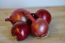 Load image into Gallery viewer, Onions, Organic (Appleton Farms - Trustees Grown)