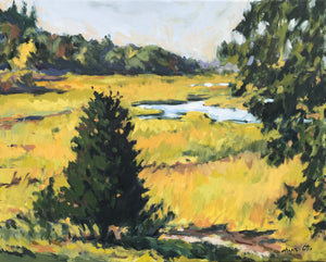Nicole Hupin-Otis - Fox Creek Marsh