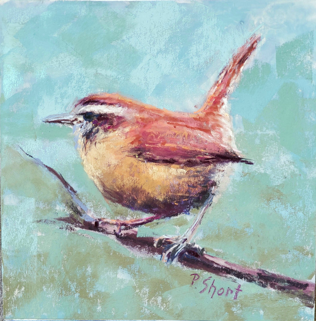 Chatter Box - Carolina Wren - original pastel 6