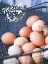 Load image into Gallery viewer, Eggs, Humanely Raised (Appleton Farms)