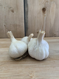 Garlic, Appleton Farms Organic