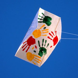 Frustrationless Flyer Single Sled Kite With Line