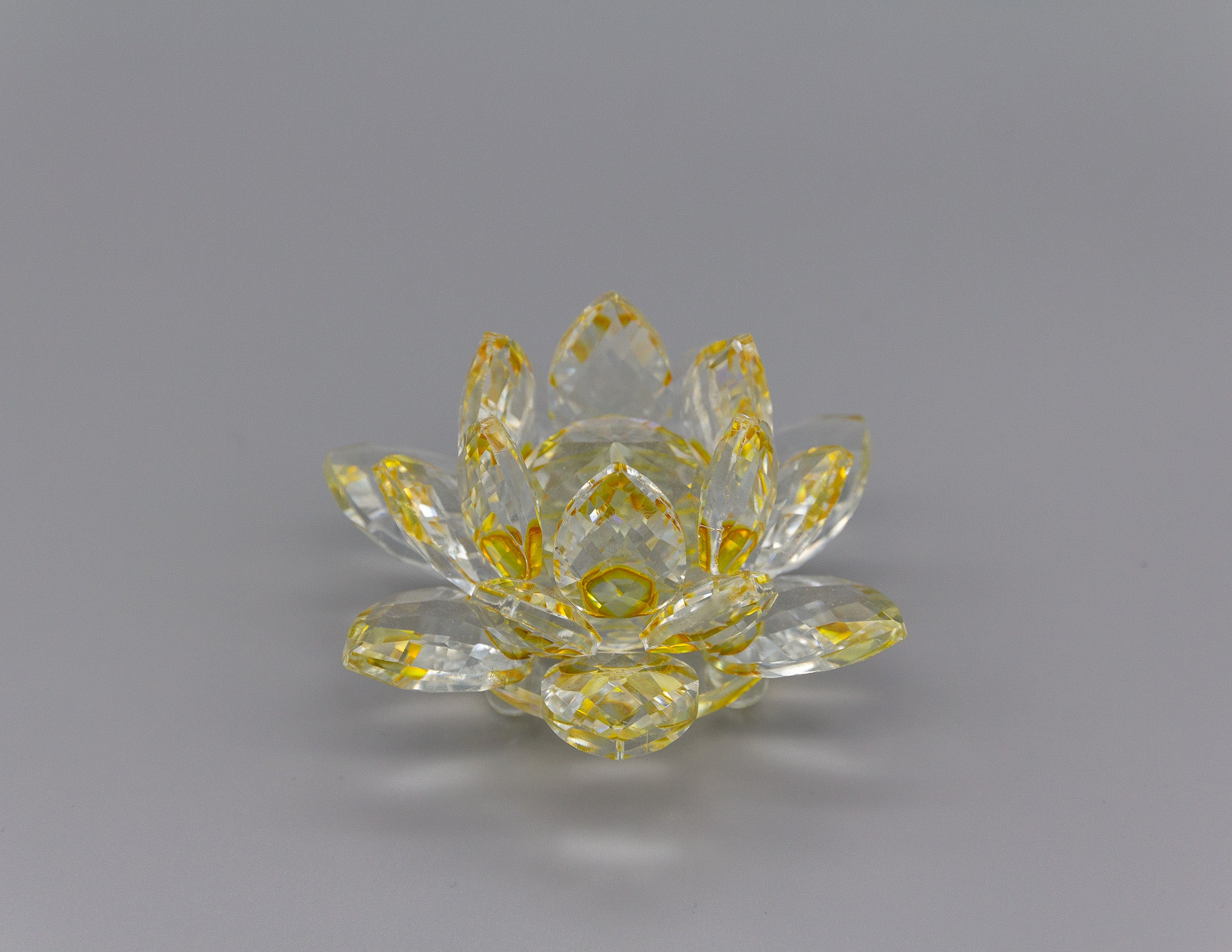 Glass Lotus