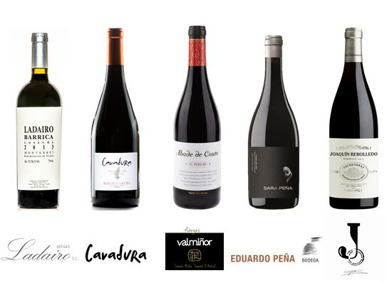 Tintos Gallegos (10 Botellas)