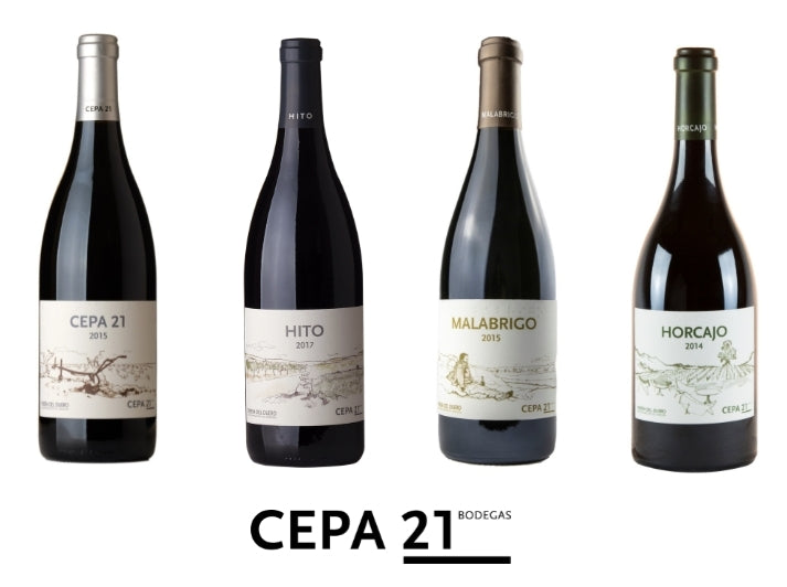 Cepa 21 (6 Botellas)