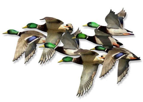 Mallards' Journey Metal Wall Art