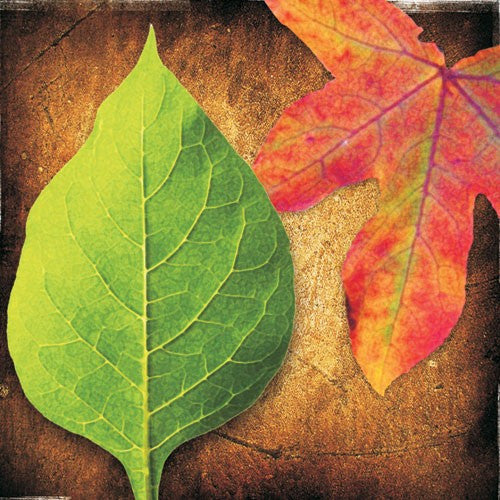 Colorful Leaves Metal Wall Art