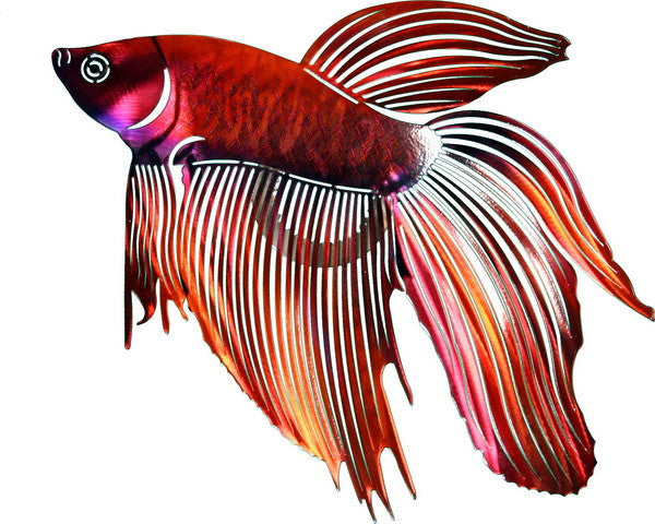 Garnet Beta Fighting Fish Metal Wall Art