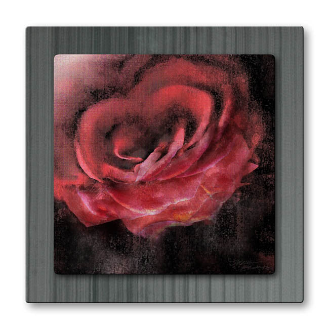 A Rose in Fog Metal Art
